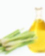 citronella essencial.png