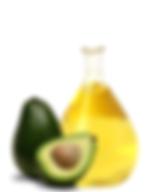 avocado.png