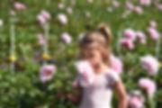 DSC_1059 - Copy.jpg