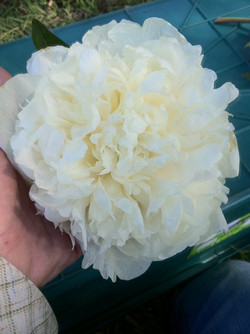 bridal shower 11-21-2012 11-32-13 AM 1936x2592