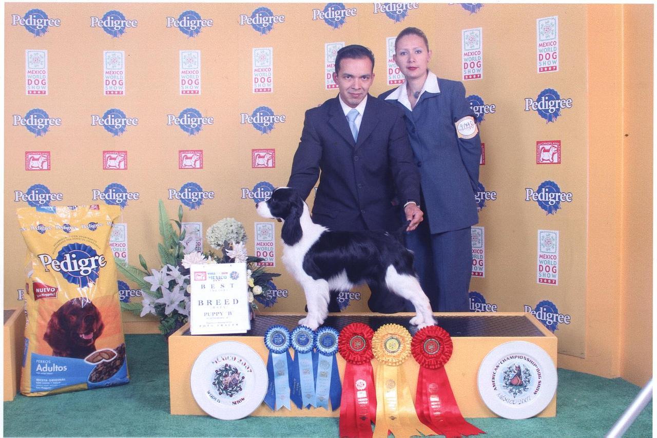 Campeones Mundiales 2007