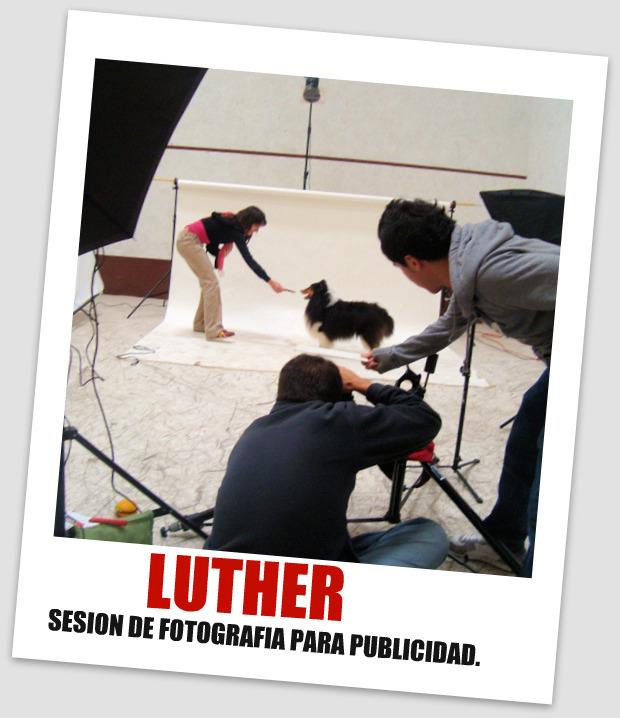 sesion+fotografica