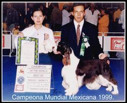 Campeones Mundiales 1999