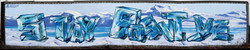 VIP Charter & Tour Bus Co