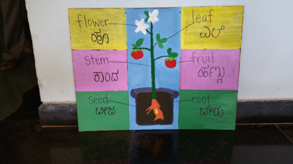 Our poster that we painted showing the different parts of the plant that food comes from.