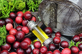 Cranberry Seed Oil.jpg