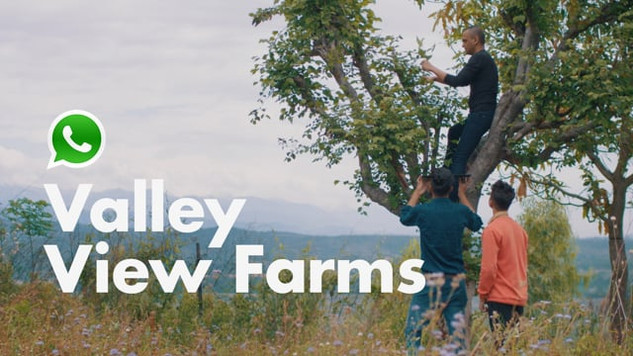 Whatsapp Business | Valley View Farms