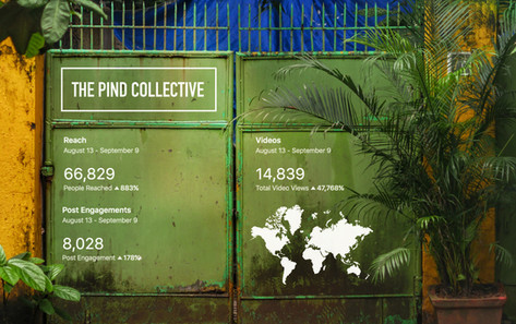 The Pind Collective : Looking Back