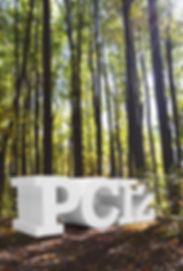 bosquepc12.jpg