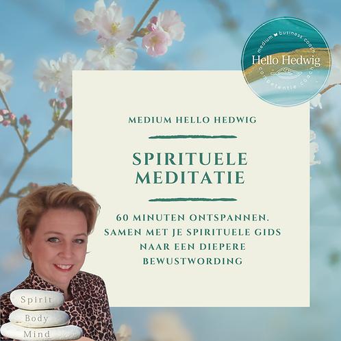 60 min. Spirituele Meditatie les