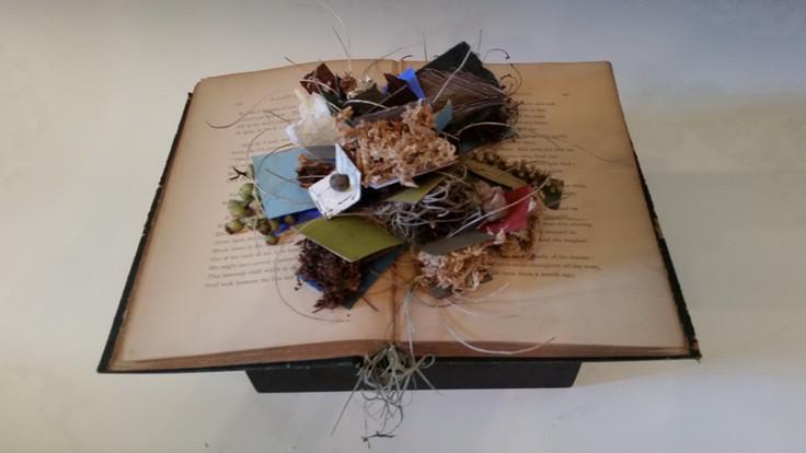 madigan_leslie_Book Collection No. 5_jpe