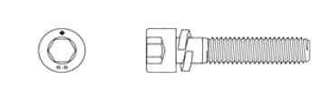 SEMS Socket Screw - Spring