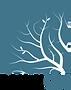 Lumion_logo_2017_Transparent.png