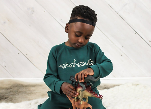 Little & Lively Dino Parade Pullover