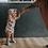 Thumbnail: Sun Bonnet Peonies - Little & Lively