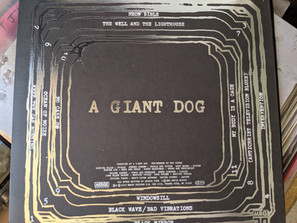Record #1: Neon Bible by A Giant Dog