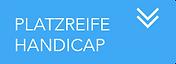 PLATZREIFE HANDICAP.png