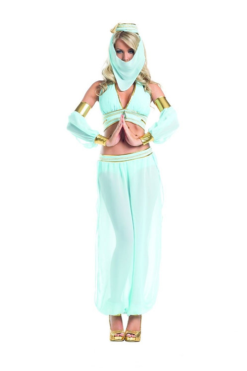 Sexy I Dream of Jeannie Halloween Aladdin's Genie Halloween Cosplay Costume