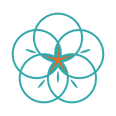 Turquoise Star-01.png