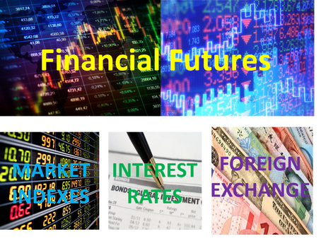 Introduction to the Financial Futures Markets