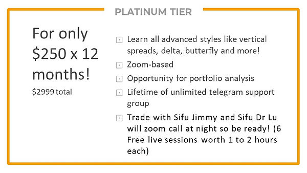 Platinum Tier - Details 2.jpg