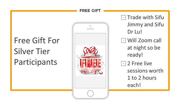 Silver Tier - Free Gift.jpg