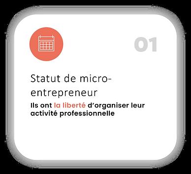 1 le statut de micro-entrepreneur