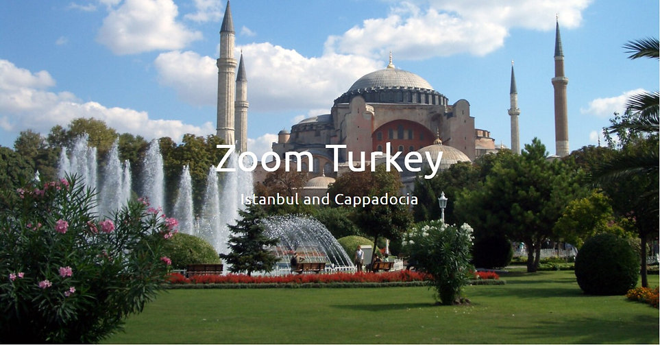 ZOOM TURKEY.jpg