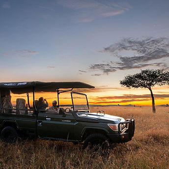 ZOOM AFRICA ELEWANA.jpg