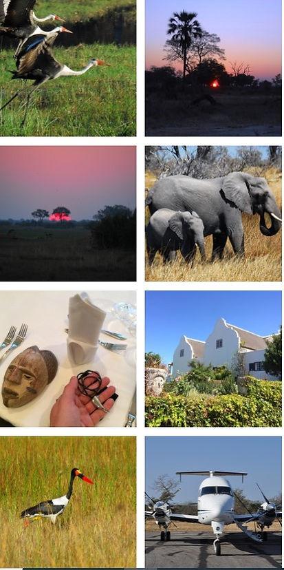 ZOOM SOUTHERN AFRICA 1.jpg