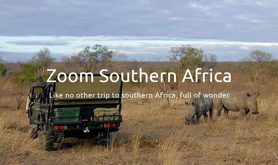 ZOOM SOUTHERN AFRICA HOME PAGE PIC.jpg