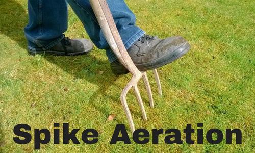 Spike aeration pokes holes in soil.
