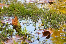 drainage dayton ohio