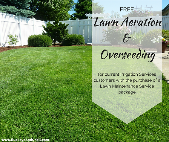 Free Lawn Aeration and Overseeding Special Offer