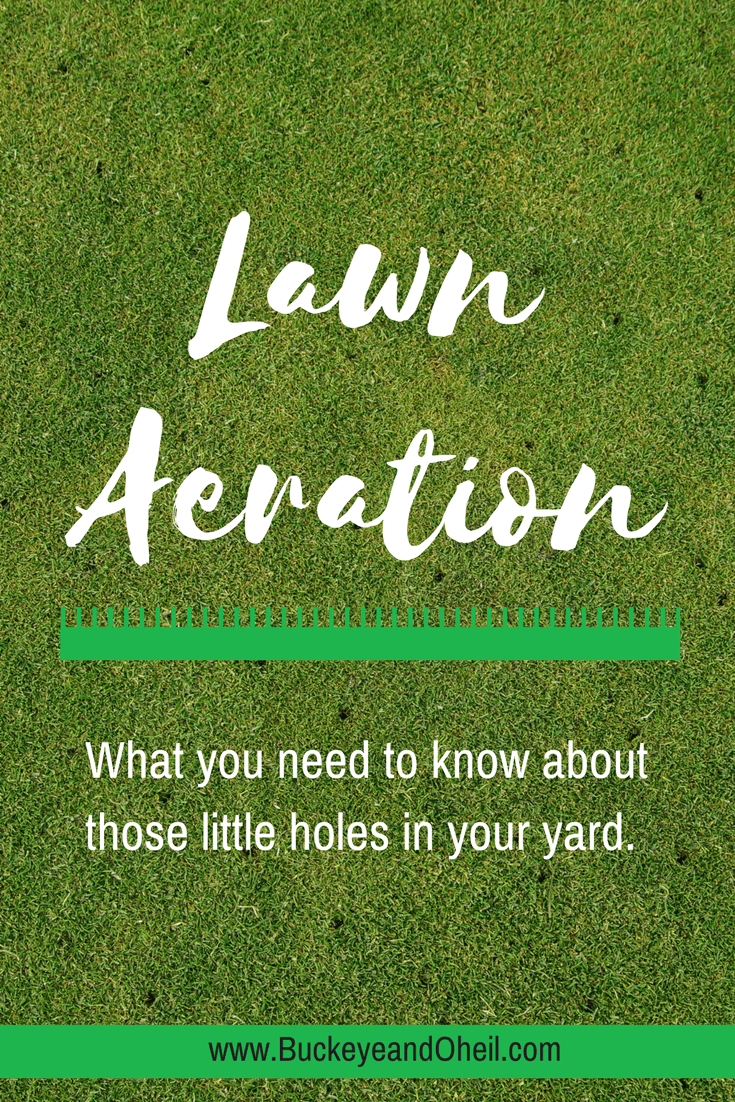 Aerating your lawn, what you need to know about those little holes in your yard.