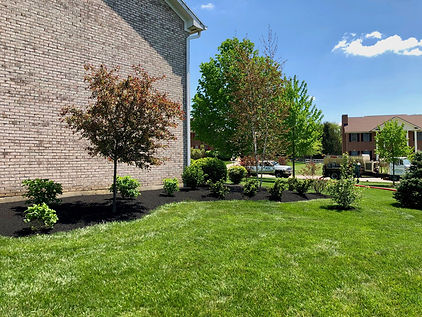 Lawn care and landscape design Dayton Ohio