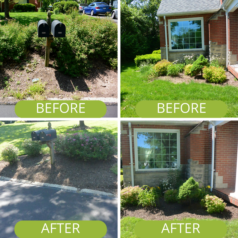 Decorative flower beds and landscaping Kettering Ohio before and after shots.