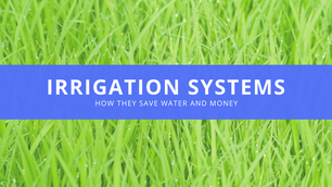 How an Irrigation System Can Save You Water and Money