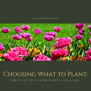 Choosing What to Plant