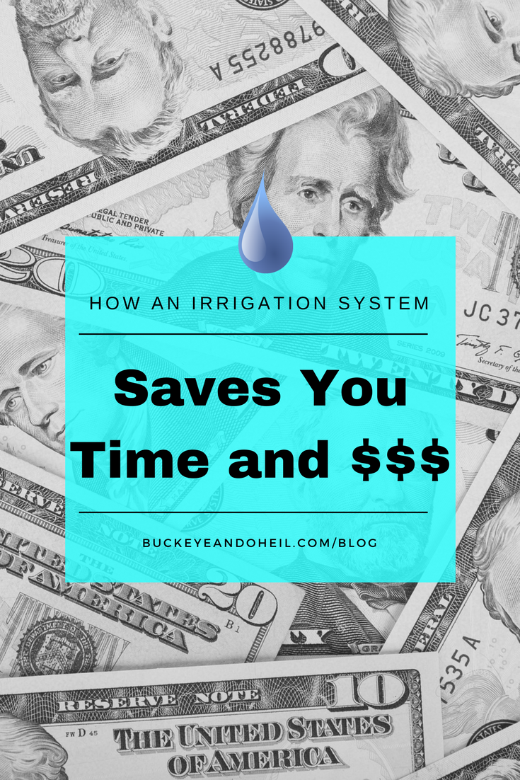 How a sprinkler system saves you money in Dayton Ohio.