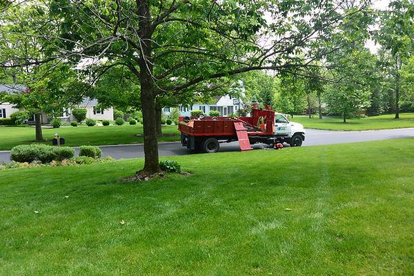 Lawn mowing service Dayton Ohio