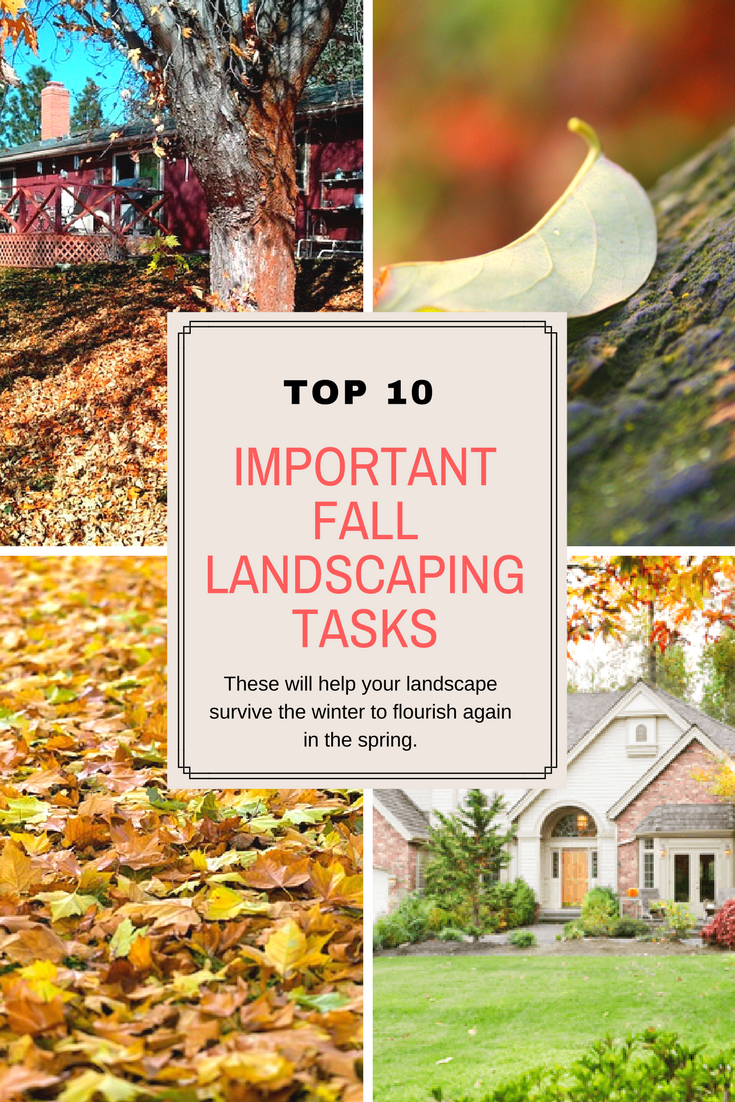 Top 10 important fall landscaping tasks.