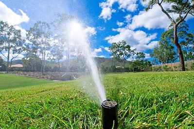 Sprinkler system waters strategically