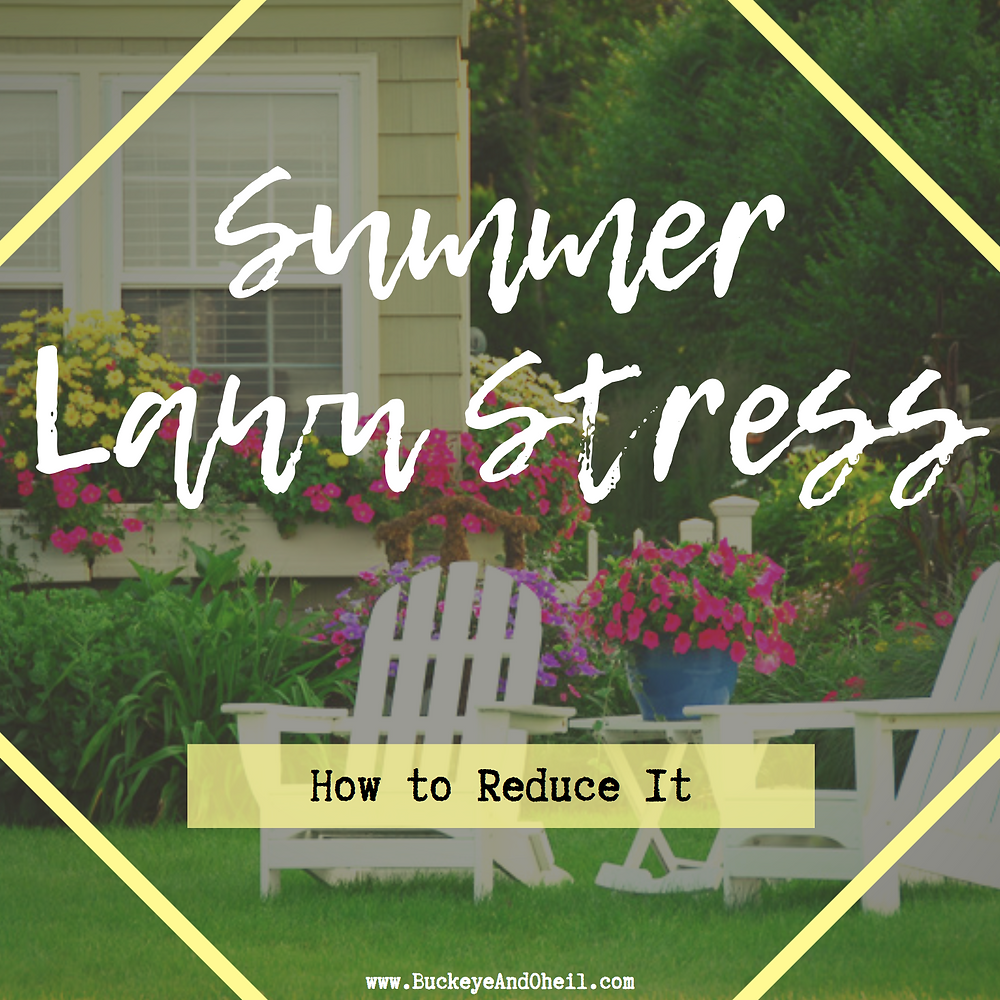 summer lawn stress and how to reduce it