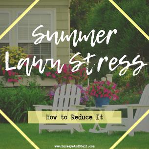 Summer Lawn Stress
