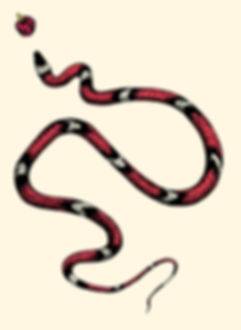 Il serpente di Nokia