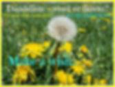 Dandelion Parachute Pinwheel Wish.jpg