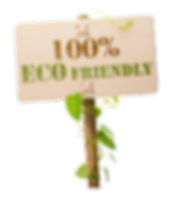 Earth Friendly copy.png