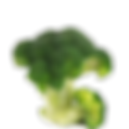 Broccoli copy.png
