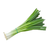 Spring Onions.png